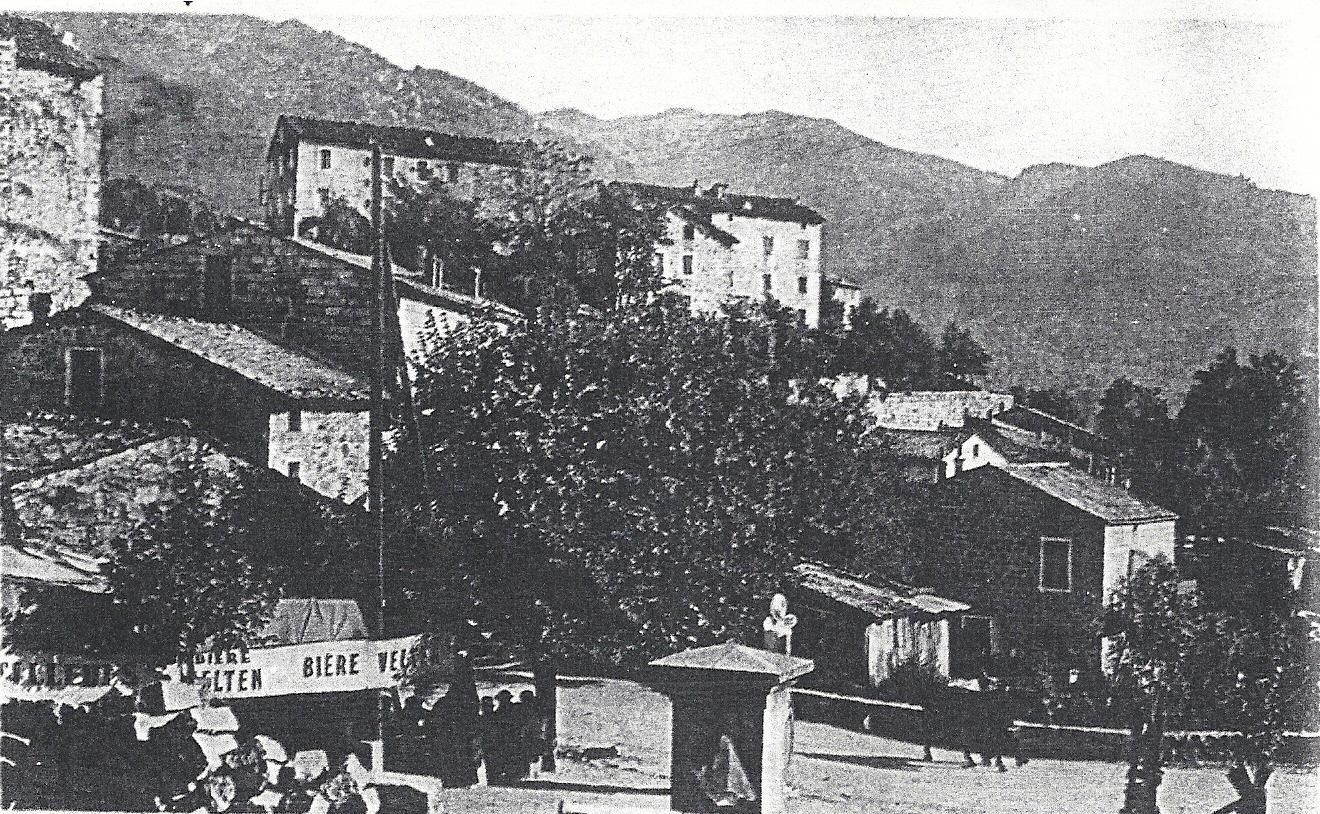 Olivese 3