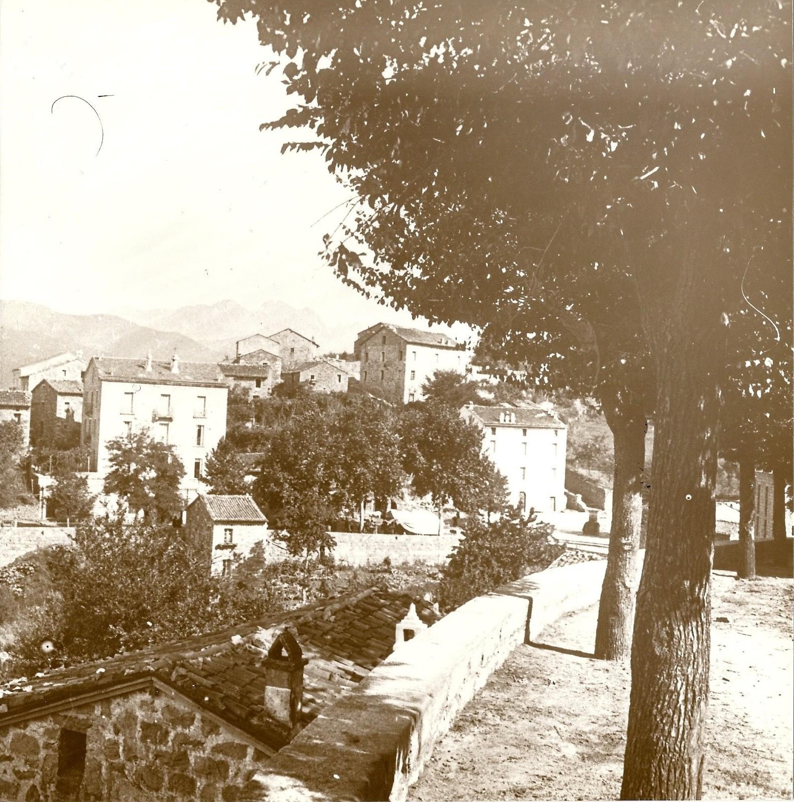 Olivese